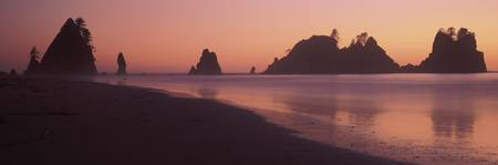 Dawn Point of the Arches Olympic National Park WA