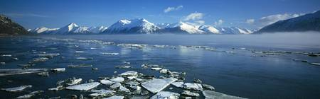 Ice fragments on Turnagain Arm