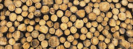 Close-up of a stack of wooden logs
