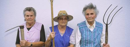 Portrait of three senior women holding gardening