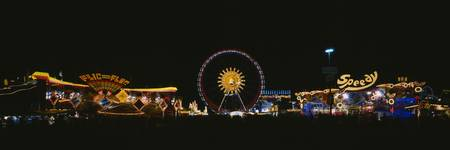 Ferris wheel and neon signs lit up at night in an