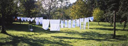 Clothes drying on a clothesline in a backyard