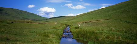 Stream through green hills