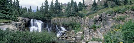 Waterfall Sneffels Creek Uncompaghre National For