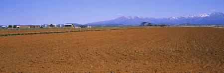 Plowed field with mountains in the background
