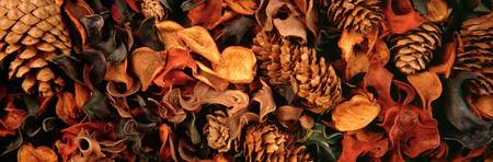 Potpourri and pine cones
