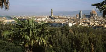 Palm trees and Ponte Vecchio Florence Italy