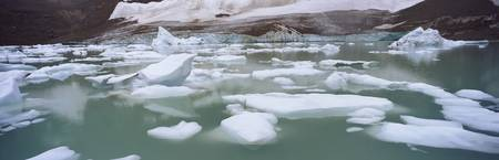 Ice floes floating in water