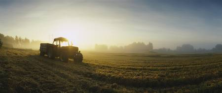 Tractor in a field at dawn
