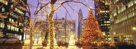 Daley Plaza Christmas Lights Chicago IL