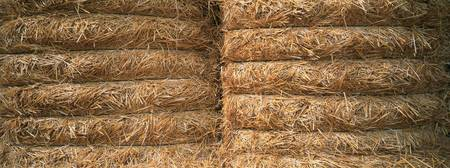 Close-up of hay bales