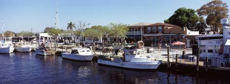 Boats moored at a harbor Tarpon Springs Pinellas