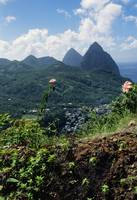 Landscape with Petit and Gros Piton mountain peak