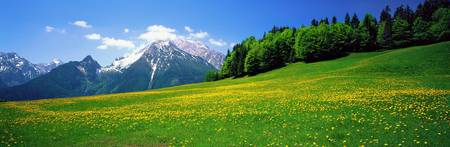 Springtime Bavarian Alps Germany