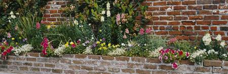 Flower beds along a brick wall