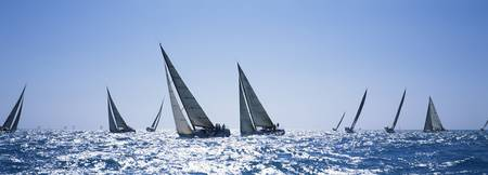 Sailboats racing in the sea