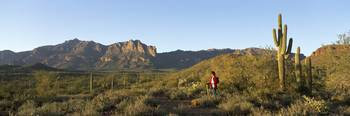 Hiker Superstition Wilderness Area Phoenix AZ