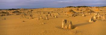 The Pinnacles Nambung National Park Australia