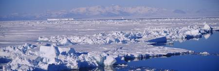 Ice floes on the sea