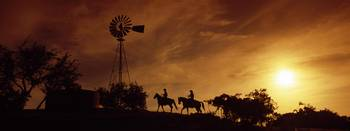 Silhouette of two horse riders at sunset
