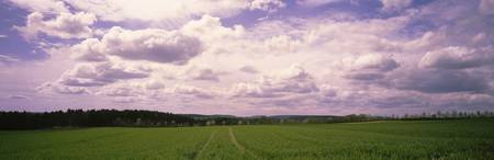 Farmland Germany
