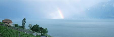 Rainbow vineyards and Lake Geneva Vaud Switzerlan