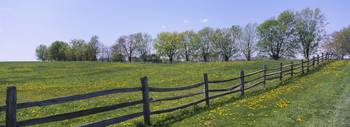 Wooden fence in a farm
