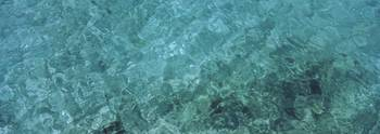 Water surface of the sea