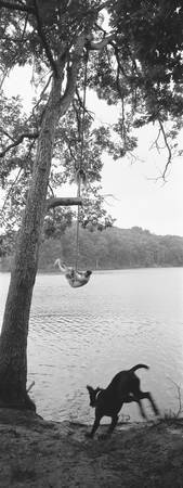 Side profile of a boy swinging on a rope over a l