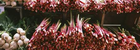 Close-up of rhubarbs and radishes at a market sta