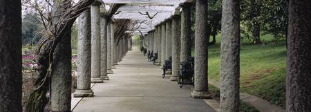 Columns along a path in a garden