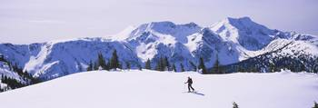 Person skiing on a snow covered landscape