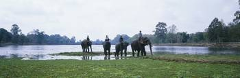 Siem Reap River and Elephants Angkor Vat Cambodia