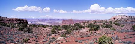Island in the Sky area Canyonlands National Park
