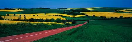 Road Fields Burgundy Yonne France
