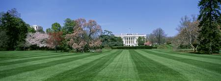 Lawn in front of the White House
