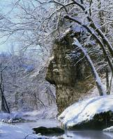 Snow-covered trees and rocks along Richmond Sprin