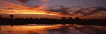 Sunset Water Hole Botswana Africa