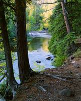 View of Gooseberry River through forest trees
