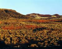 View of Doney Mountain across Painted Desert