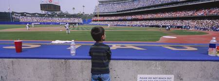 Rear view of a boy watching a baseball match