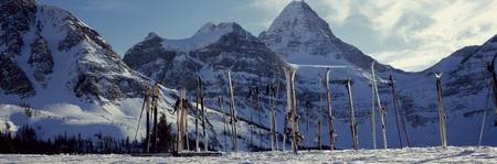 Skis and ski poles on a snow covered landscape