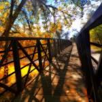 """""""autumn bridge"""" by lizmix"""