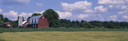 Barn on a landscape