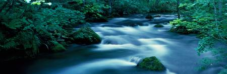 Flowing Stream Aomiri Japan