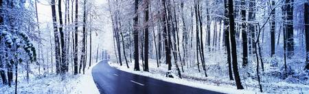 Winter Road Cantone Zurich Switzerland