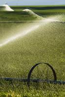 Water spraying from irrigation sprinklers on gree