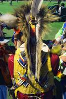 Rear view of man wearing native american indian c