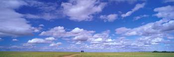 Clouds over Wuben-Perenjori Road Western Australi