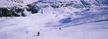 Tourists skiing on snow